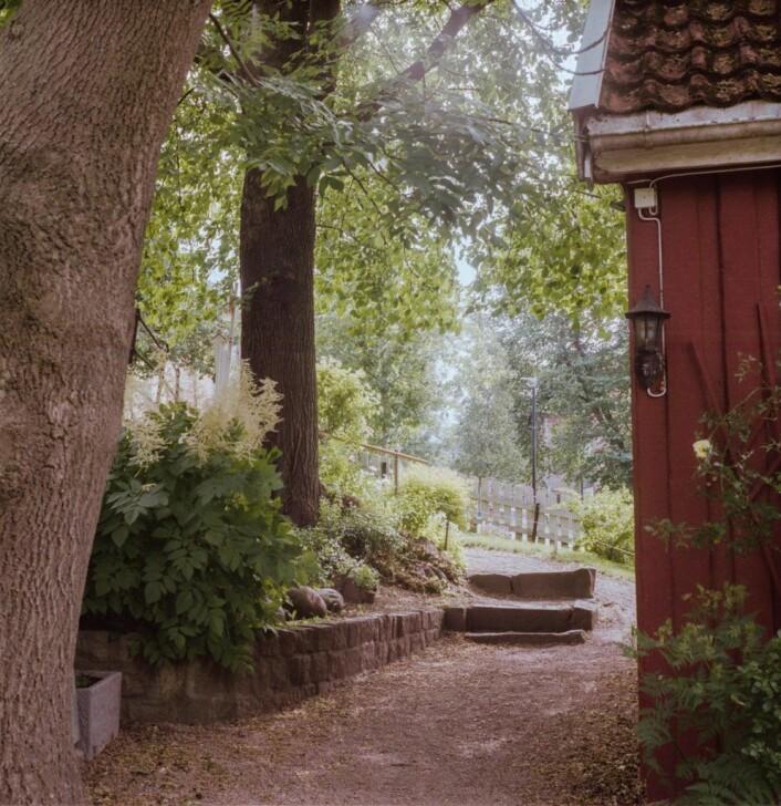 Hønse-Lovisas hus. Foto: Kyrre Songstad Seim