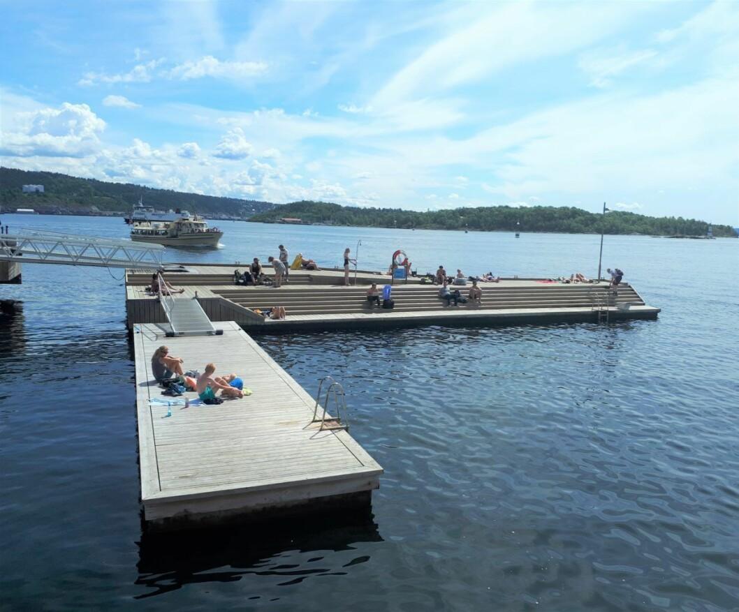 Badebrygga ytterst på Tjuvholmen skaper store støyproblemer for naboene i sommermånedene. Foto: Christian Boger
