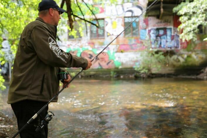 Nå er det fullt lov å fiske i Akerselva, etter at fiskekort er anskaffet. Foto: Bymiljøetaten