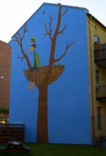 Jasons Fuglemannen på veggen til Kolstadgata 15 på Tøyen. Foto: Merethe Ruud