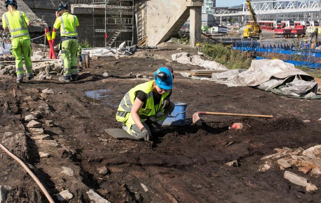 Et stort tregulv har blitt oppdaget. Her fant arkeologene mange beinrester av kylling, spillbrikker og en terning. Gulvet antas å ha ligget i et vertshus. Si hva du vil om menneskene i middelalderen, men flinke til å rydde opp etter seg, det var de ikke. Foto: Stig Helmer