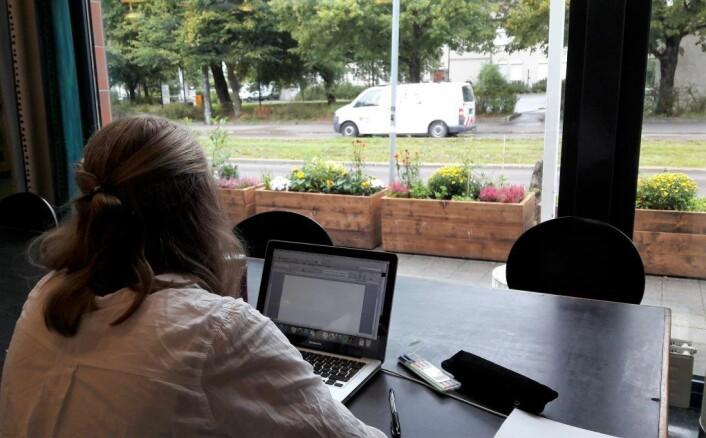 Når oppgavene blir krevende kan brukerne av bibloiteket på Sandakersenteret hvile øynene på plantene utenfor vinduene. Foto: Anders Høilund