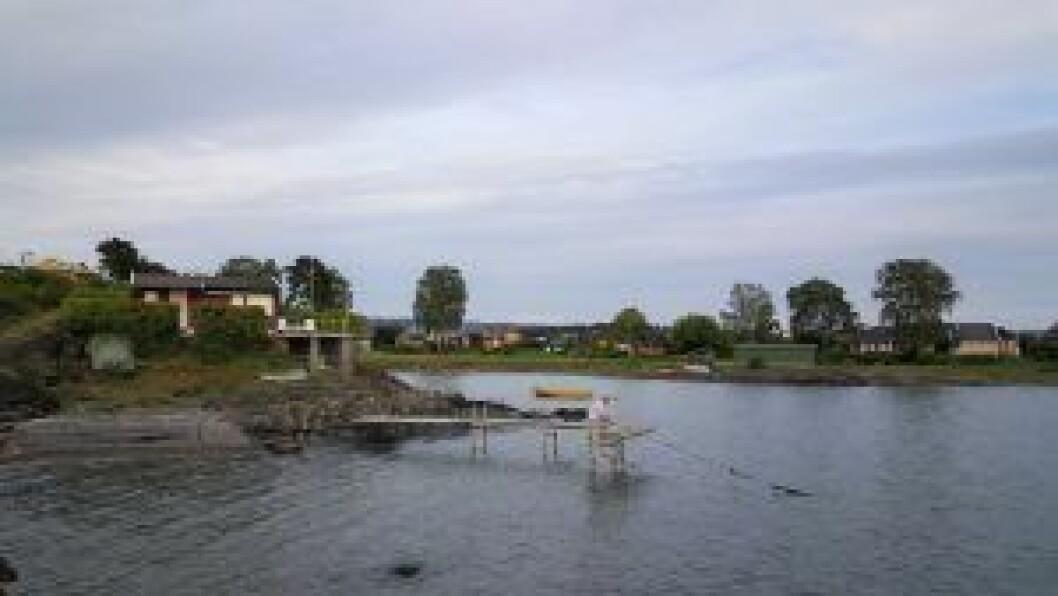 Disse hyttene på Lindøya blir, etter bystyrets vedtak, høyst sannsynlig ikke tvangsflyttet. Foto: Tarjei Kidd Olsen