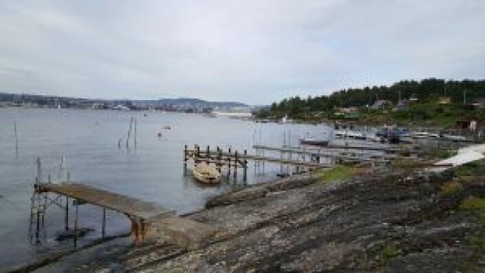Avtalen mellom byrådet og Fylkesmannen sikrer allmennheten tilgang til strandsonen på hytteøyene. Foto: Tarjei Kidd Olsen