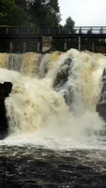 Før lukene ble stengt var vannføringen i elva på 13 kubikkmeter i sekundet. Etterpå sank den til 1 kubikkmeter. Foto: Frode Dalen