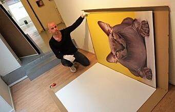 – Mange synes at det er skummelt å trå inn i et galleri, siden de ikke kan noe om kunst