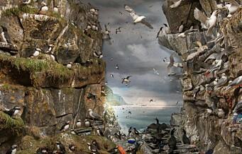 Oslomuseum forsøpler museet for å vise et av verdens største miljøproblemer