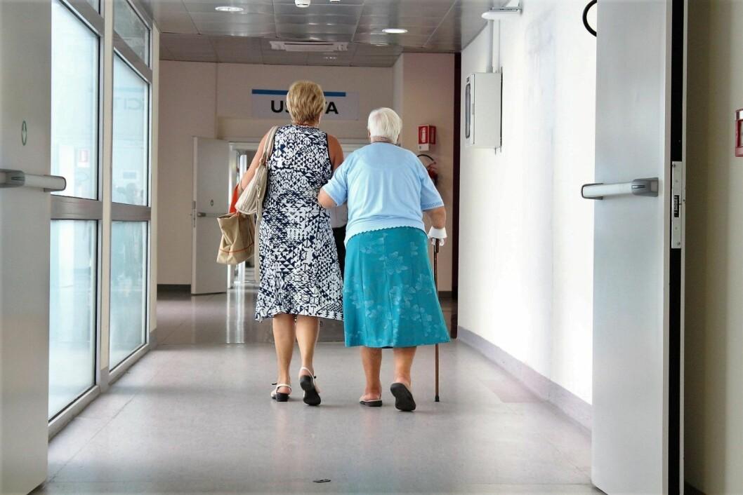 Ensomme eldre i Oslo skal få klippekort på ulike aktiviteter sammen med hjelpepleier. Foto/illustrasjonsbilde: Pixabay