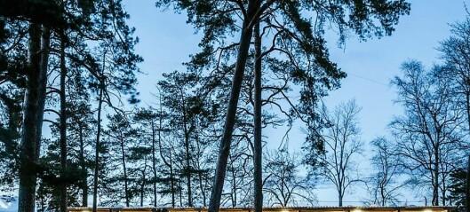 Arkitektfirma får pris for å gjøre badeidyll på Malmøya tilgjengelig for alle