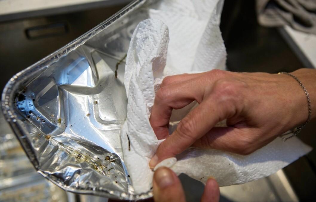 – Mange nordmenn vet ikke at stekeformer skal sorteres med glass- og metallavfall. Bare husk å skylle eller tørke ut av formen først. Foto: Johnny Syversen