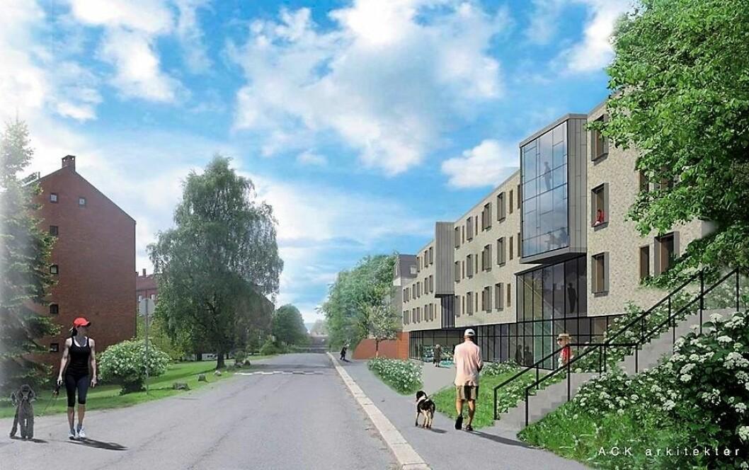 Den nye Dronning Ingrids hage skal stå klar i 2021, tett opp til Lille Tøyen hageby. Illustrasjon: ACK arkitekter