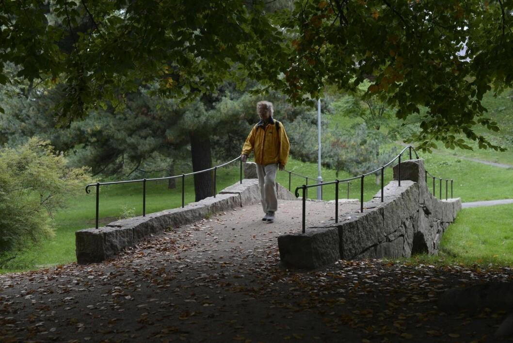Parken på St. Hanshaugen. Foto: Christian Vassdal