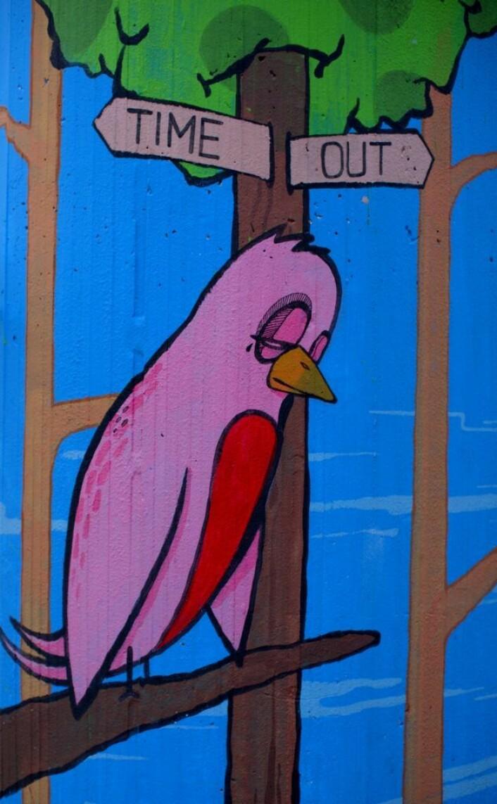 Byfuglen på ferie. Time Out. Foto: Merethe Ruud