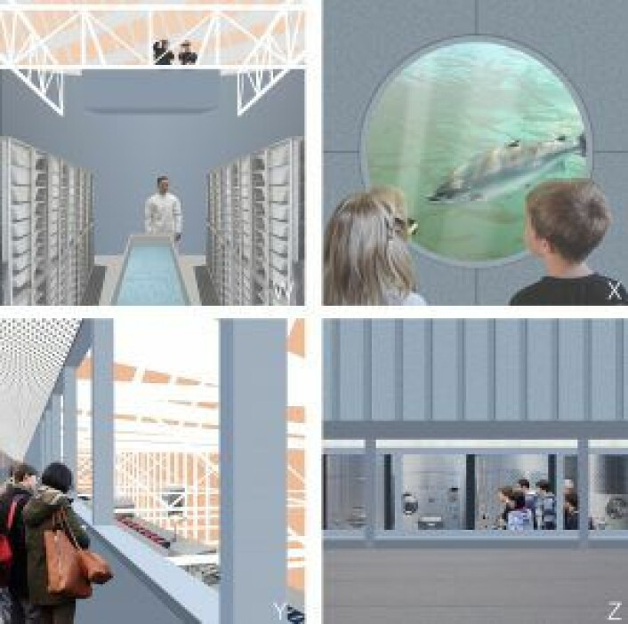 """Visjonstegninger som viser """"besøkslinjen"""", det vil si de forskjellige attraksjonene i anlegget. Tegninger: Anders Haagaas Grinde"""