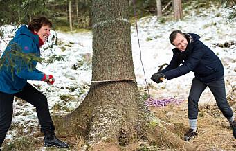Erle (10) og Stefan (9) tenner Oslo kommunes juletregave til London på Trafalgar Square i morgen