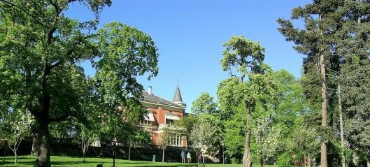 Med hjerte for Oslo: På Briskeby finnes en liten parkoase med egen 1700-tallshage