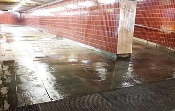 Vannet renner fortsatt gjennom taket på Carl Berner T-bane, men bruk noen sekunder på kunsten der nede, neste gang du farer forbi