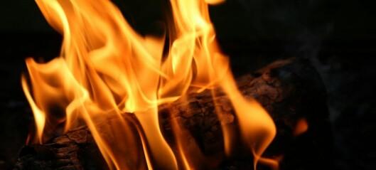 Røyksugere kan redusere utslippene av svevestøv fra Oslos 90 900 vedovner