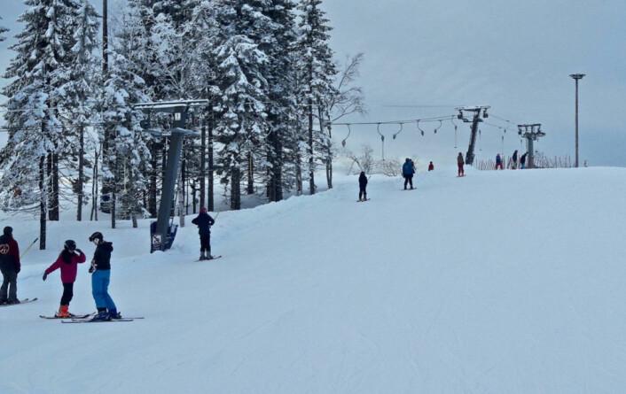 Alle syvendeklassinger i Bydel Gamle Oslo får en gratis opplæringsdag i slalomski eller snowboard i bakkene til Oslo Vinterpark ved Tryvann. Foto: Tøyen Sportsklubb