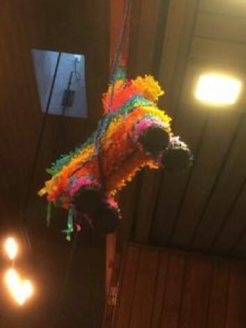 Pinataen skal minne om karnevalstiden. Foto: Kjersti Opstad