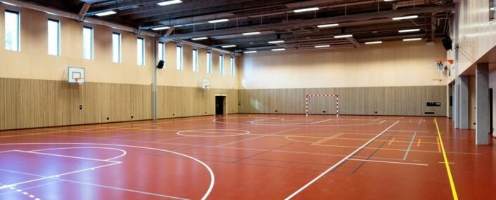 Aktivitetsbygget skal i hovudsak innehalde gymsal, garderobar, undervisningsrom, kjøkken, butikk og musikkrom. Foto: Statsbygg