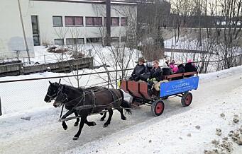 Du vet de røde Hop On - Hop Off-bussene? Langs Akerselva tar du Hop On - Hop Off hest og vogn