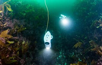 Nå skal svømmende droner finne søppel i Oslofjorden