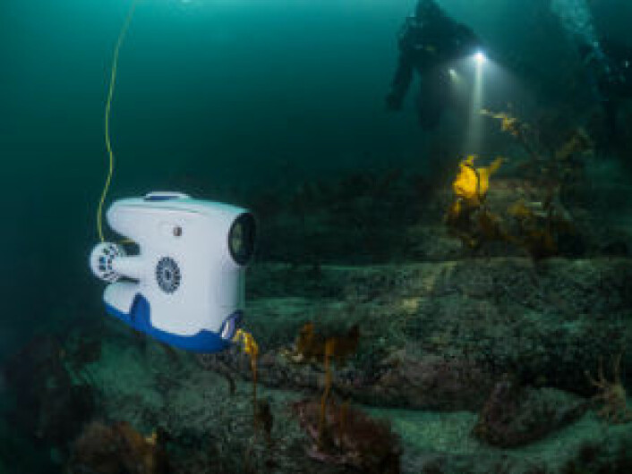 Blueye Pioneer og en dykker. Foto: Blueye Robotics AS