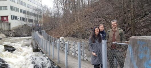 Endelig, etter 18 måneder: Turveien langs Alnaelva er åpen igjen