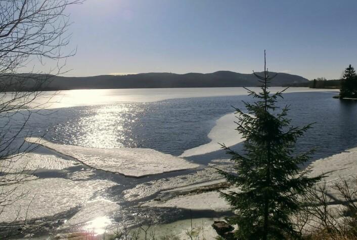 Vann- og avløpsetaten har tappet Maridalsvannet for å unngå en mulig vårflom. Illustrasjonsbilde: Skiforeningen