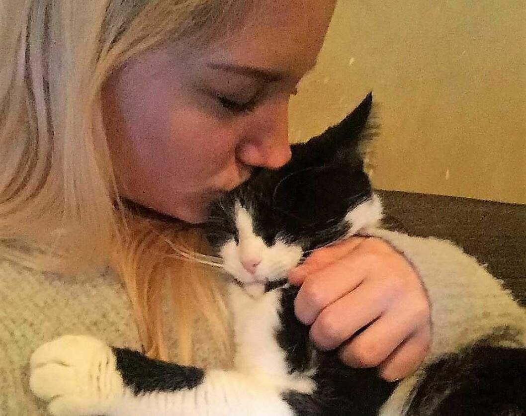 Pusi ble funnet etter over tre uker på gata. — Vi var helt desperate i letingen etter katten vår. Uten hjelp fra Dyrebar.no og Foreningen for Omplassering av Dyr hadde vi aldri kunnet kose med Pusi igjen, sier katteeier Thali M Liberman. Foto: Thali M Liberman