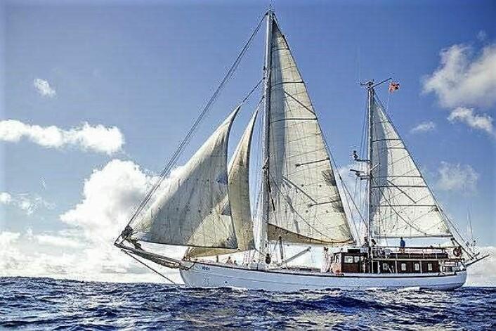S/S Vega var båten det skulle strandryddes fra.