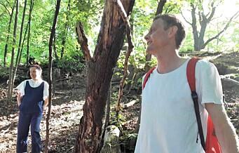 Rektor ved Tøyen skole: — Noen av våre elever har knapt sett et vilt tre