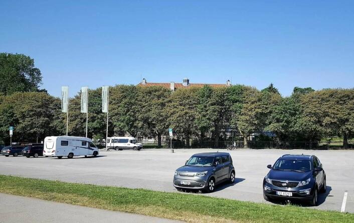 Her, på Sirkustomta ved Botanisk Hage, ønsker kommunen å legge den midlertidige flerbrukshallen for breddeidretten i indre by. Foto: Tarjei Kidd Olsen