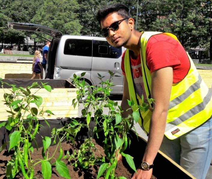 Adil Ahmed ønsket seg arbeidserfaring, samt å bidra til et bedre lokalmiljø. Derfor søkte han om sommerjobb som parkvert. Foto: Anders Høilund