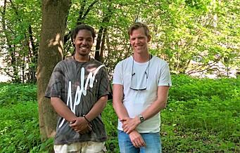 St. Hanshaugens løse fugler skaper nye hjem for naturens fugler