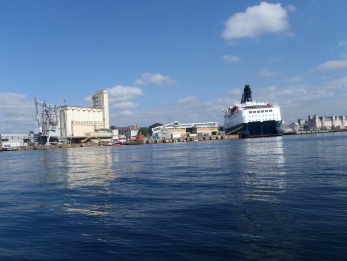 Byen ser annerledes ut fra en robåt på fjorden, og danskebåten blir skummelt stor. Det siste gir Marit Bredesen en liten bekymringstanke. Foto: Anders Høilund