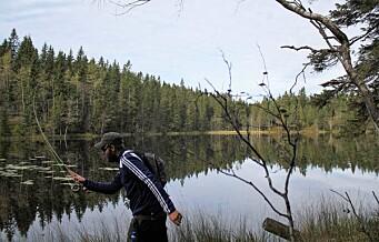 Disse lite besøkte men lett tilgjengelige fiskevannene gir deg villmarksfølelse i Oslomarka
