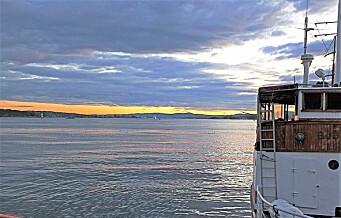 Torsken i Oslofjorden dør ut. Overfiske og varmere vann kan føre til fiskeforbud