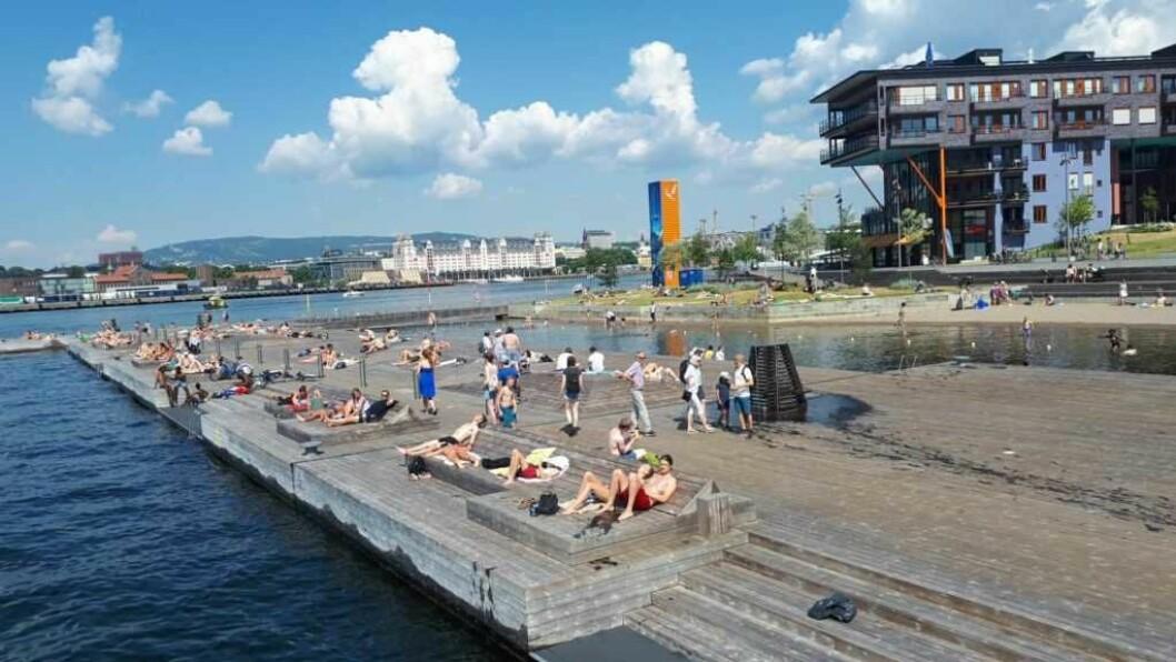 Kloakkutslippet kan være helseskadelig mener Oslos kommunelege Tore Steen. Derfor blir Sørenga stengt torsdag. Foto: Christian Boger