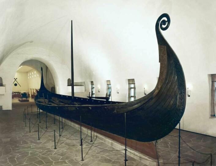 Samlingen av vikingskip på Bygdøy tiltrekker seg turister fra hele verden. Osbergskipet er unikt, og var en verdenssensasjon da det ble funnet. Foto: Kulturhistorisk museum, Universitetet i Oslo