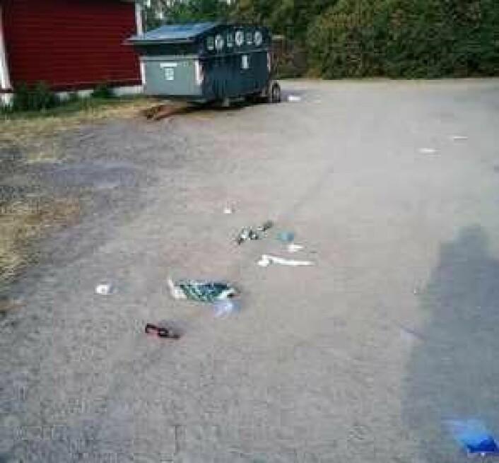Foto: Lindøya vel