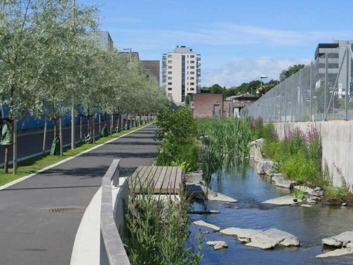 """Det blir mer tursti og grøntområder rundt den """"nye"""" Hovinbekken når omlag 2.000 boliger og flere næringsbygg står ferdig. Foto: Plan- og bygningsetaten"""