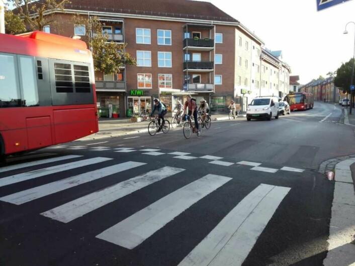 Når bussen stopper ved fotgjengerfeltet, suser det ofte syklister forbi på utsiden og lager farlige situasjoner. Syklistene på bildet oppfører seg eksemplarisk og har ventet bak bussen. Foto: Anders Høilund