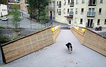 En ny bro, Sundtbroa, er åpnet over Akerselva