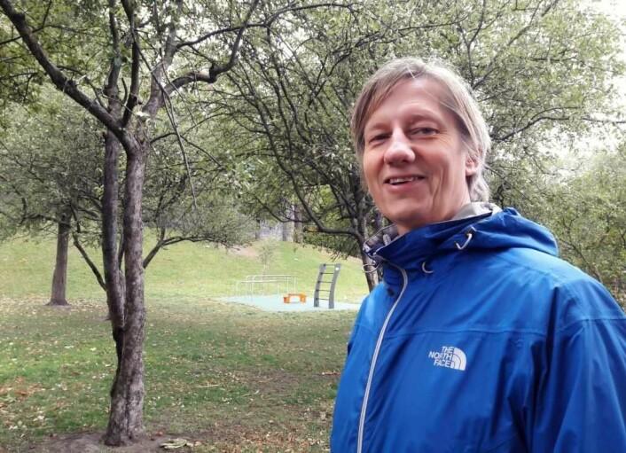 � Du trenger ikke dra til skogs for å finne sopp, sier Roger Andersen, leder for Oslo og omland sopp- og nyttevekstforening. Foto: Anders Høilund
