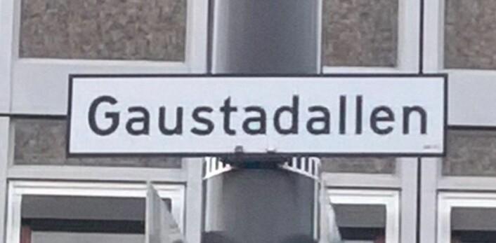 Gaustadalléen eller Gaustaddalen? Ett eller annet sted mellom bydelsutvalget i Norde Aker og A/S Veidrift har det blitt krøll på bokstavene i Gaustadalléen. Foto: Audun Lona