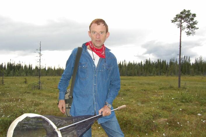 På ei myr i Trysil finner Morten blomsterfluen Villa Occulta, for første gang i Norge. Foto: Sissel Henriksen