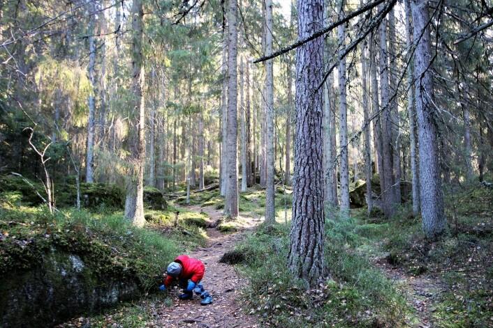 Alltid nye steder å utforske. Foto: André Kjernsli
