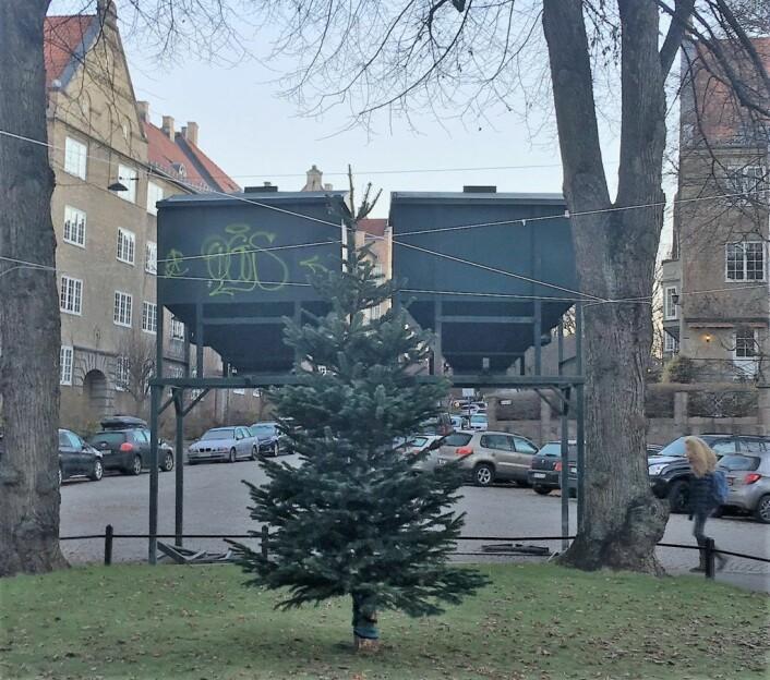 Juletreet i parken blir gruset på størrelse av kommunens grussiloer. Foto: Angela Amoroso